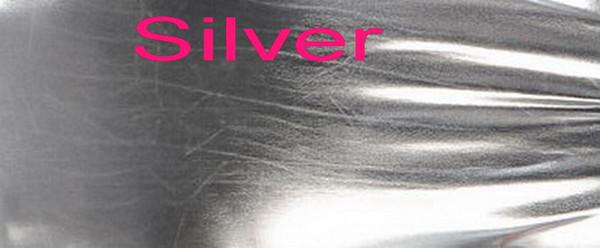 WB14-Silver