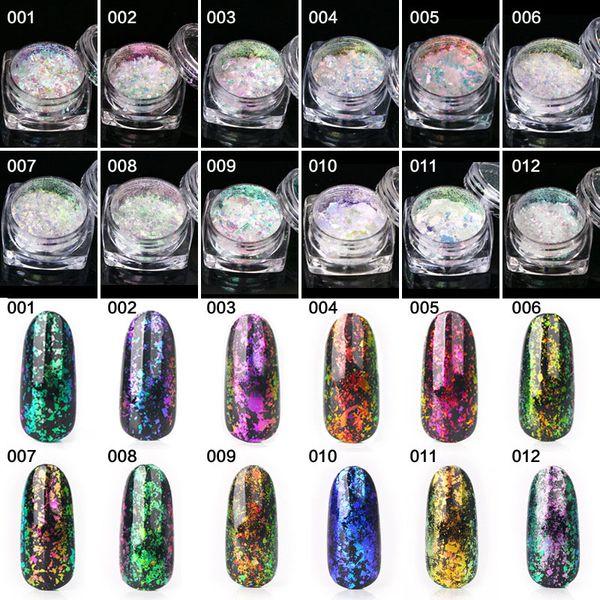 12pcs / set Poudre de flocons transparente Chameleon Nail Art Poudre de miroir scintillant New Colorful Pigment Pigment Manicure Set