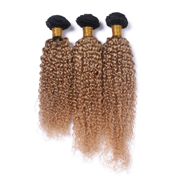 Ombre Blonde Human Hair Weave Brazilian Virgin Hair Deep Curly Hair Extension 3 Bundle Two Tone Color T1B/27 Curly Bundles Wholesale Price