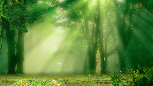 Sunshine Through Forest Photography Backdrops Vinyl Fabric Spring Flowers Outdoor Scenic Kids Children Photo Studio Background