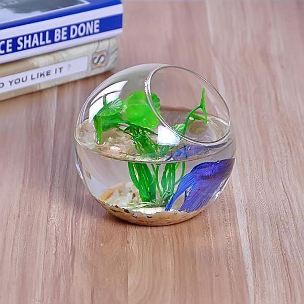 2pcs Clear Glass Vase Fishbowl Planter Terrarium Container Hydroponic Decor 10/12/15cm Dia