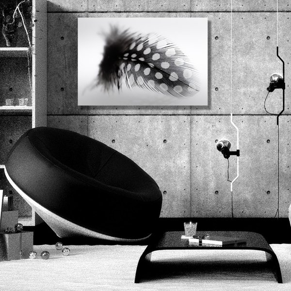 Europe Style Black with White Point Feather Canvas Painting Home Decor Canvas Wall Art Picture Digital Art Print for Living Room