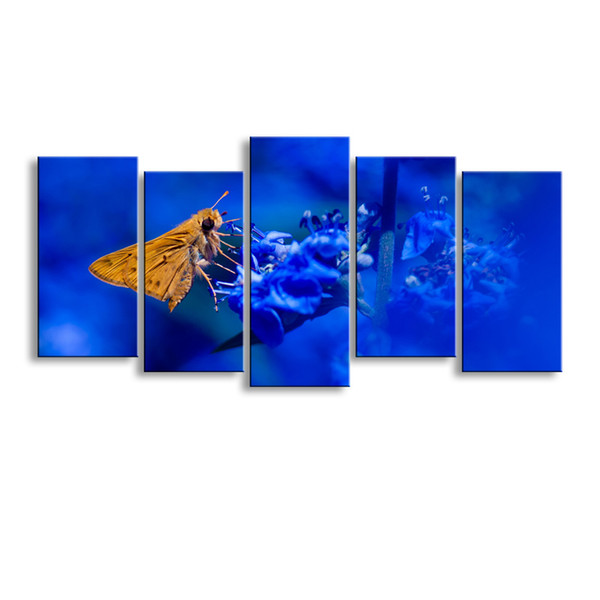 5 pieces high-definition print butterfly canvas painting poster and wall art living room picture B-090