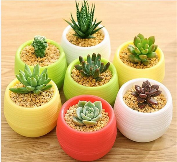 Gardening Flower Pots Small Mini Colorful Plastic Nursery Flower Planter Pots Garden Deco Gardening Tool G267