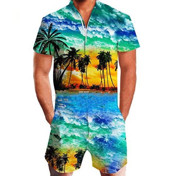 Hawaii 1.
