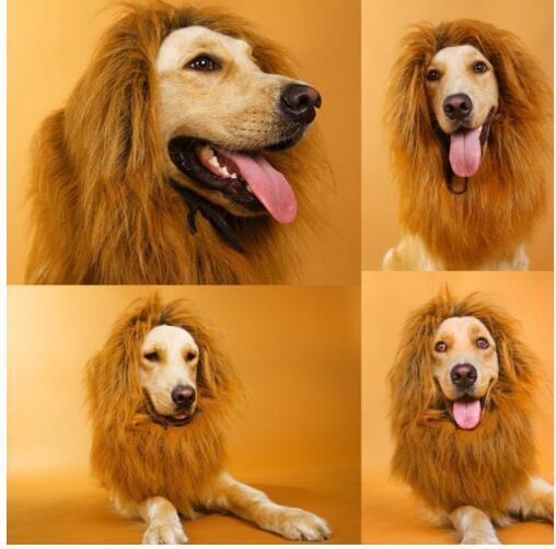 Adornos para el cabello Disfraz de mascota Disfraces de Halloween para gatos Disfraz de Disfraz de peluca para perros grandes Disfraz de mascota Lion Mane WKA KKA5085