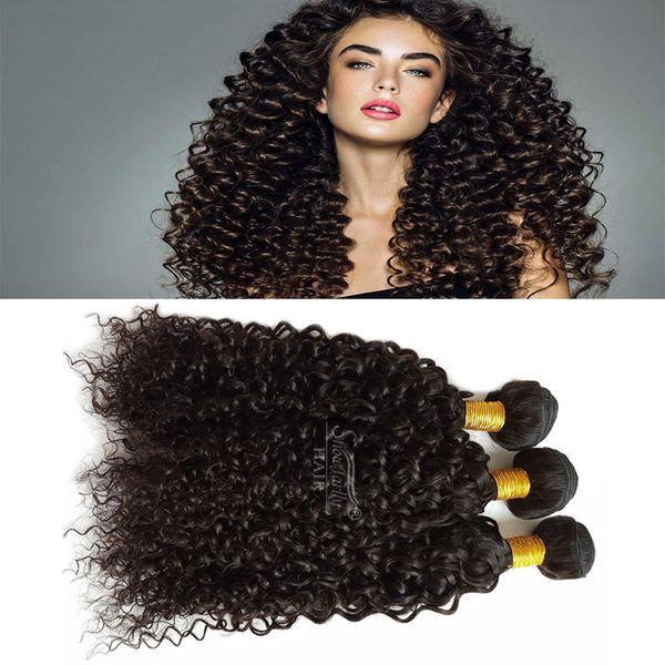Brazilian Virgin Curly Weave 3 bundle Human Hair bundles wet and wavy for black women double weft braiding hair