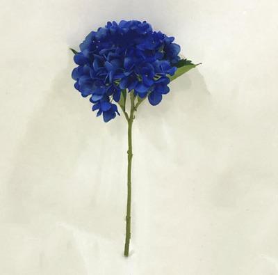 # 10 로얄 블루
