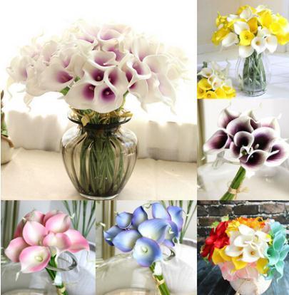 graines de calla lily 20 pcs graines de fleurs rares pour la plantation de jardin à la maison (pas des bulbes de lys calla), bonsaï plante en pot fleurs vivaces