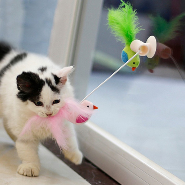 Cheap Cat Toys Pet Cat Feather Catnip Bell Toy Feather Teaser Wand Sucker Window Bird Interactive Playing Accessories