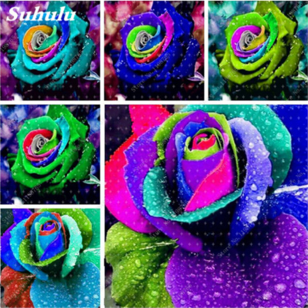 Nuovo arrivo colorato rosa 100 pezzi bella rara arcobaleno rosa semi fai da te vaso bonsai casa giardino decorazione fiori così fragranti
