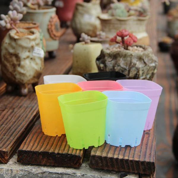 Fioriera in plastica Mini Multicolore Quadrato Base di piante grasse Base per usi speciali Il fondo è più traspirante ZA5842