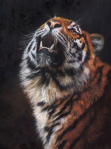 Artwork -amur-tiger-looking-up- Art mural moderne sans cadre pour la décoration de maisons et de bureaux, peinture à l'huile, peintures d'animaux, cadre.