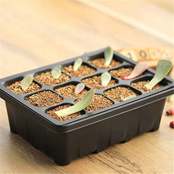 Plant Seeds Grow Insert Propagation Box for Vegetables Fruit Plant Seedling Starter Trays Hot Sale Garden Tools 12 Cells Plants Pot