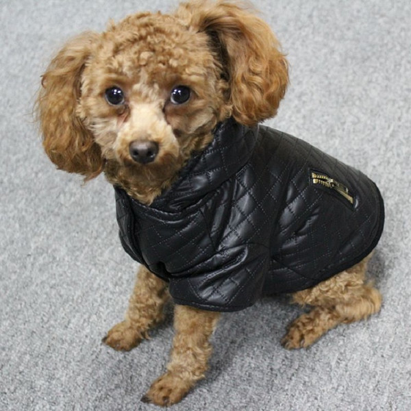Leather Small Pet Dog Clothes Winter Detachable Two -Piece Set Dog Coat And Jacket Warm Four Legs Hoodie Dog Apparel Pet Clothing