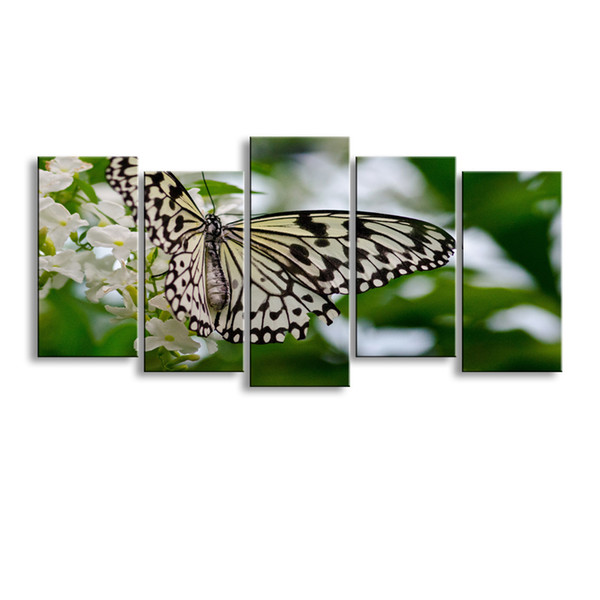 5 pieces high-definition print butterfly canvas painting poster and wall art living room picture B-082
