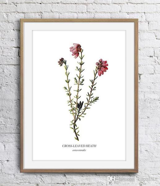 Flor vermelha Planta Selvagem Decoração Da Parede Pictures Folha Verde Art Print Home Decor Poster Unframe 16 24 36 47 Polegadas