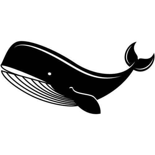 Ocean Big Whale Animal Car Sticker Vinyl Car Packaging Body Decal Decoration
