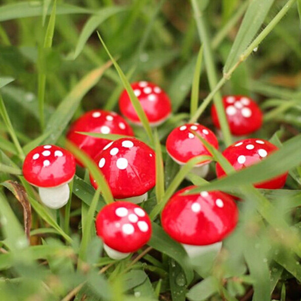 590pcs/lot 2cm Artificial Mini Mushroom Miniatures Fairy Garden Moss Terrarium Resin Crafts Decorations Stakes Craft For Home