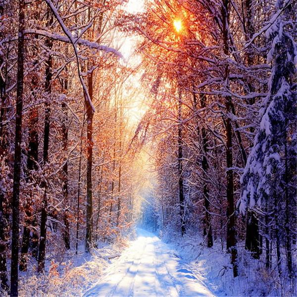 Winter-szenische Fotografie-Hintergrund-starker Schnee bedeckte Landstraßen-Sonnenschein durch Waldbäume Kinderfoto-Studio-Hintergründe