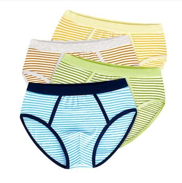 Soft Organic Cotton Kids Underwear 4 Pcs/lot Teenager Boxer Baby Briefs Shorts Panties for 4-14y Children panty Boys Underwear