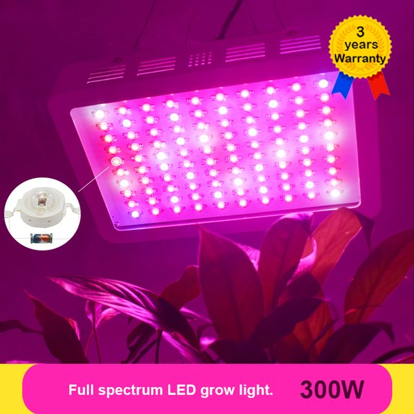 Para De Cultivo Flor En Lámpara Fitolampy LED Light Plantas Nuevo Cultivo Lámpara Cultivo LED Full De Luz Kits 300W Grow De Spectrum Compre c35uFKJT1l