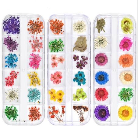 top popular 12 Colors Dried Flowers Nail Art Decorations 3d Natural Daisy Gypsophila Preserved Dry Flower DIY Stickers Manicure Accessories 2021