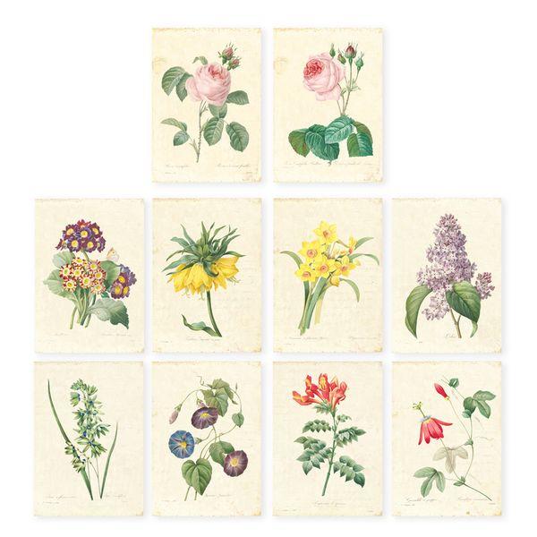 خمر redoute النباتية الفن طباعة مجموعة من 10 الفن روز floar مزرعة جدار ديكور غير المؤطرة Y18102209