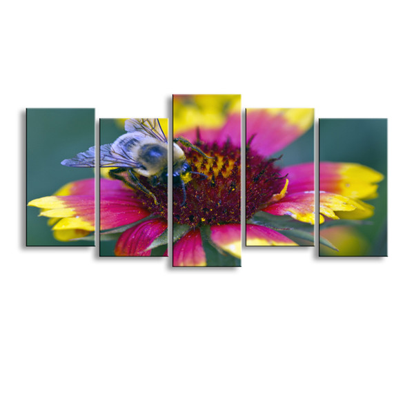 5 pieces high-definition print butterfly canvas painting poster and wall art living room picture B-076