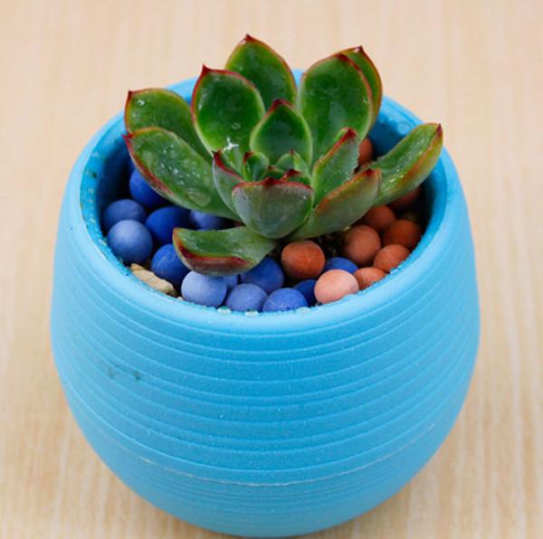 Succulent Plant Flower Pot 7*7CM 5 Colors Garden Home Office desktop Decor Micro Landscape Planter Reusable Pot