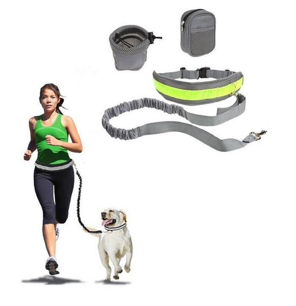 Multifunction Hands Free Dog Leash Training Suit Pet Dogs Reflective Stripe Adjustable Waist Belt with Pouch Bag for Walking Running