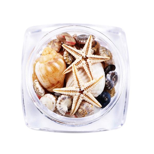 Nails Art Natural DIY 3D Mini Conch Shells Starfish Sea Beach Ornaments Nail Rhinestones Decorations Tools