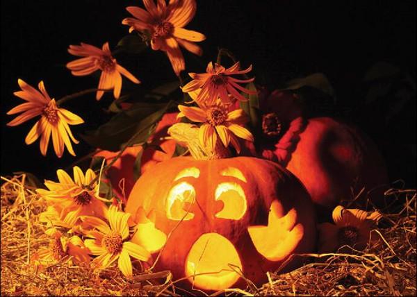 SHENGONGBAO Vinyl custom Halloween theme Vinyl Photography Backdrops Prop Custom Photography Background WSJH-11