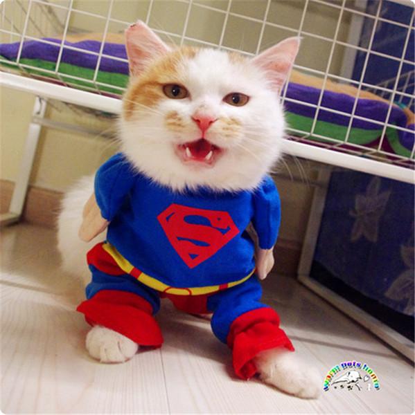 Vestiti Fanny Cute Dog all'ingrosso Pet Puppy Cat Suit Superman con mantello Halloween Pet Abiti per cani Abbigliamento
