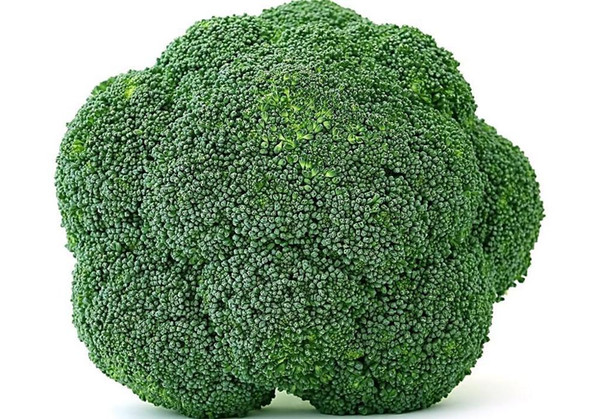 Suntoday Chinese Broccoli Seeds Vegetable Calabrese Green Sprouting Asian Garden Plant Heirloom Non-GMO Hybrid Organic Fresh Seeds