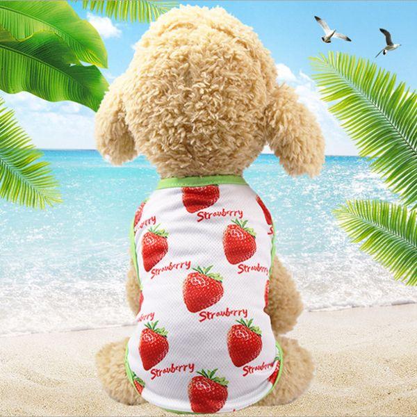 Strawberry vest