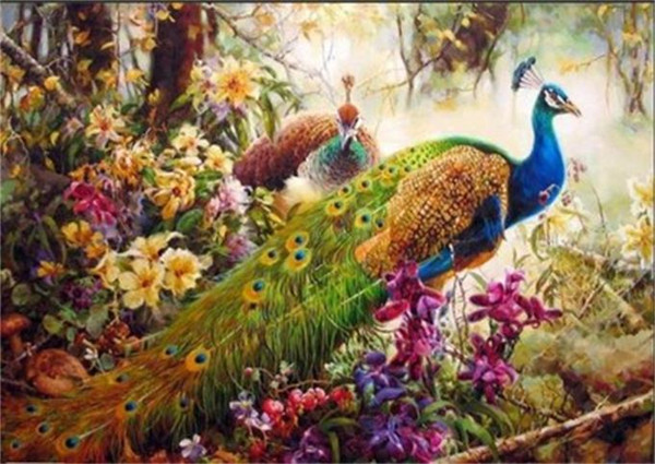 16x20 inches Beautiful Peacock Feather DIY Paint On Canvas drawing By Numbers Kits Art Acrylic Oil Painting Frame For Adult Teen