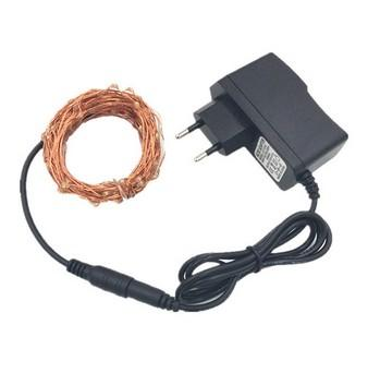 10M 100LED Copper wire lamp 12V1A Power Adapter Waterproof Collorful Interior Decoration Light for Christmas