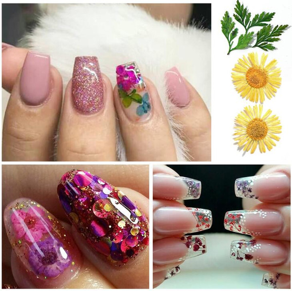 best selling Tatyking 12 Styles Lot Beautiful 3D Decoration Real Dry Dried Flower For UV Gel Acrylic Nail Art Tips Nail Stickers Decal