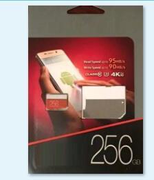 256 GB EVO Plus