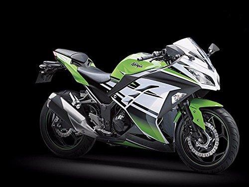 Kit de démoulage complet en ABS ABS vert noir et blanc pour Ninja 300 2013-2015 2014 EX300R EX-300R EX 300R