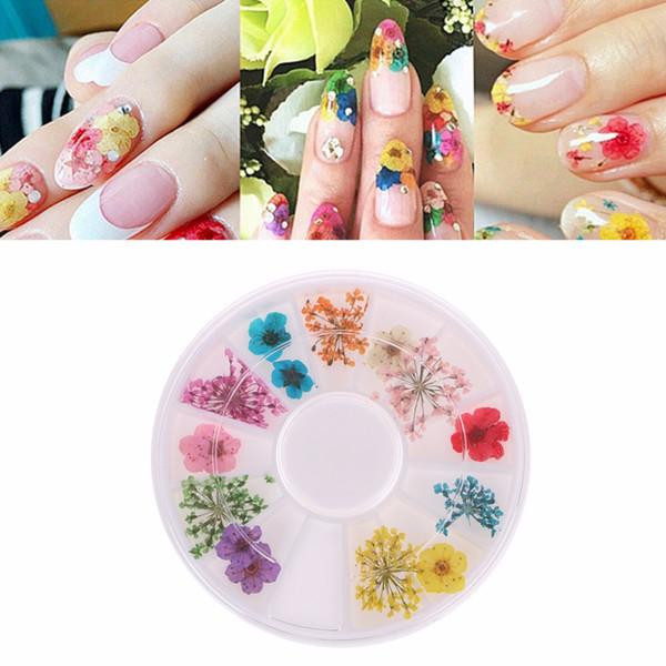 Real Nail Dried Flowers Nail Art Décoration DIY Conseils Cas Petites Fleurs Nails