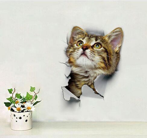 색상 : Cat 5