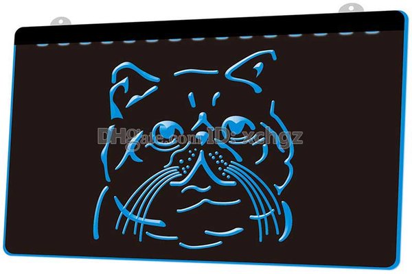 [F1751] Exotic-Shorthair-Cat Breed-Pet Shop NEW 3D Engraving LED Light Sign Customize on Demand 8 colors