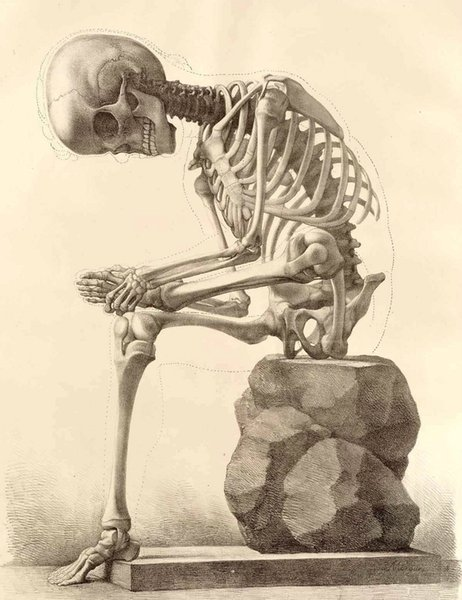Skeleton Sitting on a Stone Home Decor Art Silk Poster 24x36inch 24x43inch