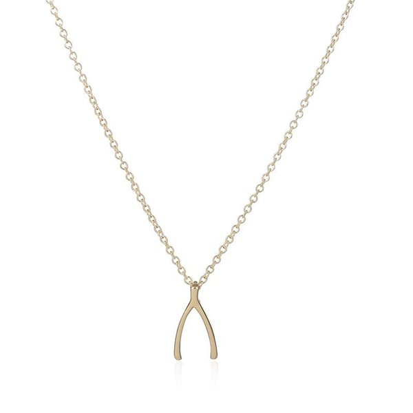 Wishbone Necklaces, Wishbone Charm Necklaces, Good Luck Necklace, Holding necklace, Make a Wish Lucky Charm