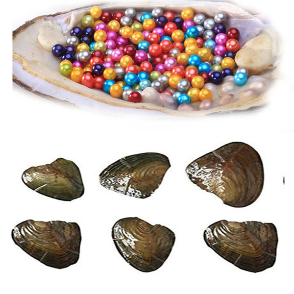 Natural round Pearl 6-7mm Fresh water Oyster Shell More New color bithday party surprise dad mum sister brother family gift free shipping