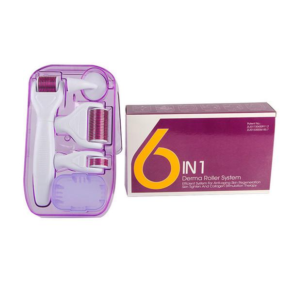DRS Derma rulo Sistemi 6 in 1 Titanyum Derma Rulo Skar Yüz Fırça Mikro İğne Terapi Cilt Bakım Seti DHL ücretsiz kargo