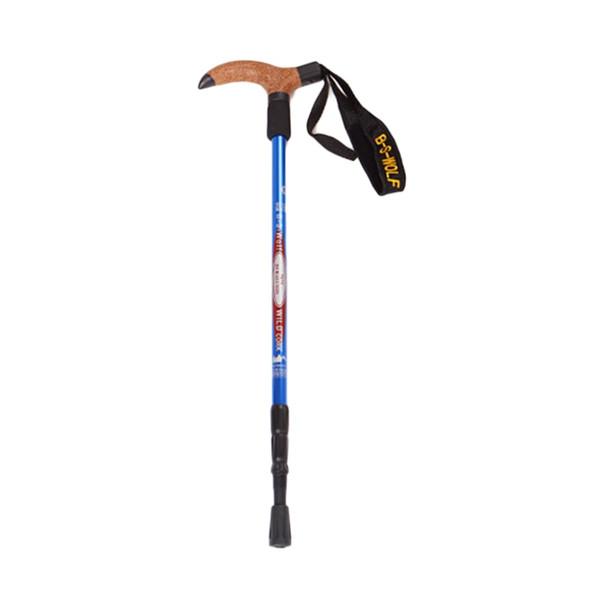 Arrival Anti Nordic Walking Hiking Sticks Trekking Hiking Poles Ultralight Walking Canes Cork