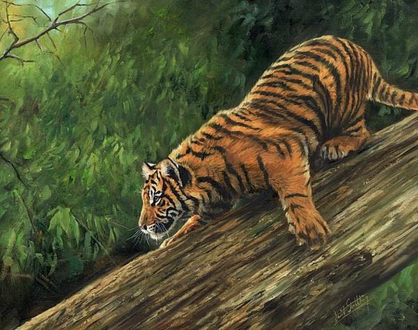 Obras de arte -tiger-descending-tree- Arte moderno de la pared de la lona sin marco para la decoración del hogar y la oficina, pintura al óleo, pinturas de animales, marco.